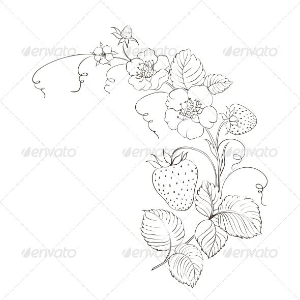 GraphicRiver Strawberries Isolated 4819490