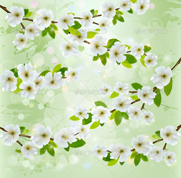GraphicRiver Nature Background with White Blossoming Branches 4826378