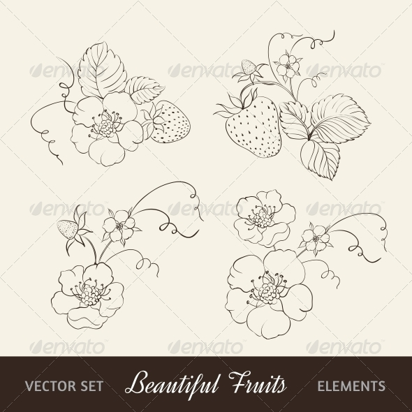 GraphicRiver Strawberry Elements on Sepia Background 4827095