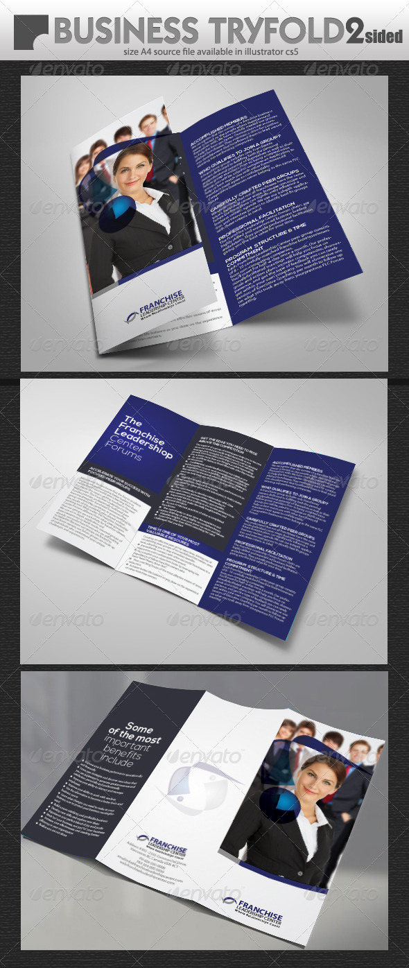 GraphicRiver Business Try-Fold 4835058