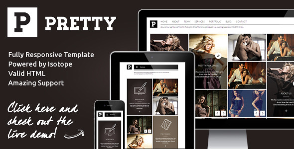 ThemeForest Pretty Clean & Modern Responsive Portfolio Site 4836445