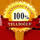 tellioglu