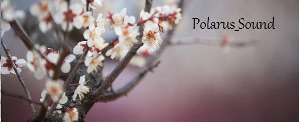 Polarus_Sound