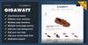 01_gigawatt-ecommerce-banner.__thumbnail