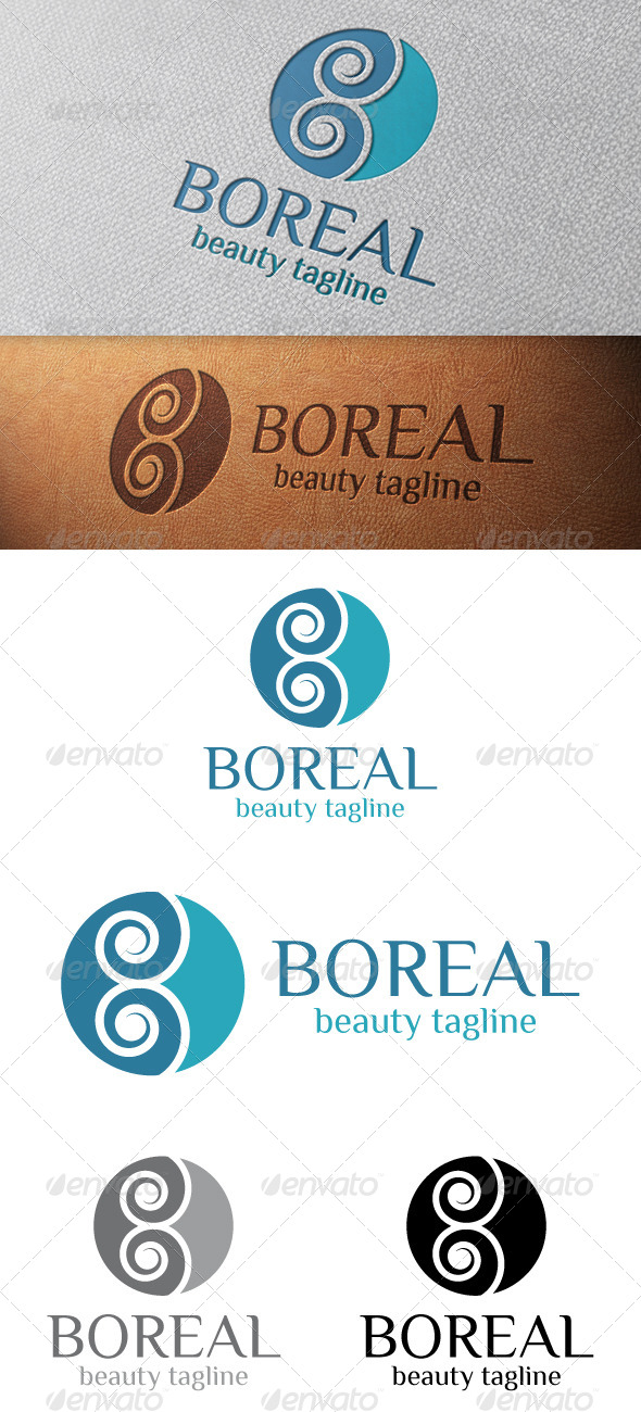 GraphicRiver Boreal Abstract Logo Template 4850386