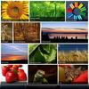 03_preset3.__thumbnail
