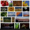 14_preset14.__thumbnail
