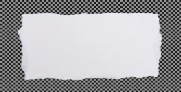 Paper Elements (White) by AvidEditor : VideoHive