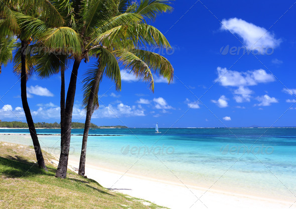 PhotoDune Paradise beach in tropical island 507475