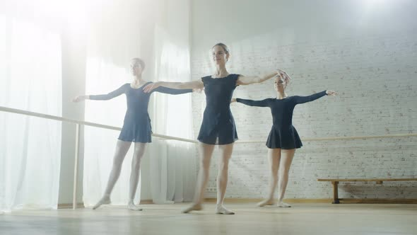 VideoHive Three Young and Graceful Ballerinas Practicing Their Dance 19473666