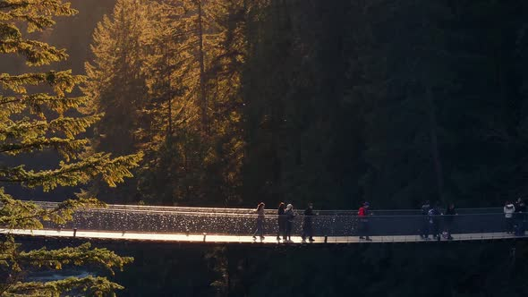 VideoHive People On Rope Bridge In Sunset Forest 19133117
