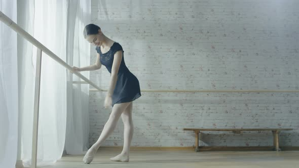 VideoHive Long shot of a Young and Beautiful Ballerina Dancing at the Barre 19473655