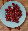 Fresh cherry from a garden