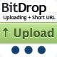 BitDrop - File Hosting with Short URL Link - CodeCanyon Item for Sale