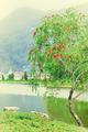 Vintage landscape - PhotoDune Item for Sale