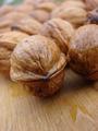 Nuts - PhotoDune Item for Sale