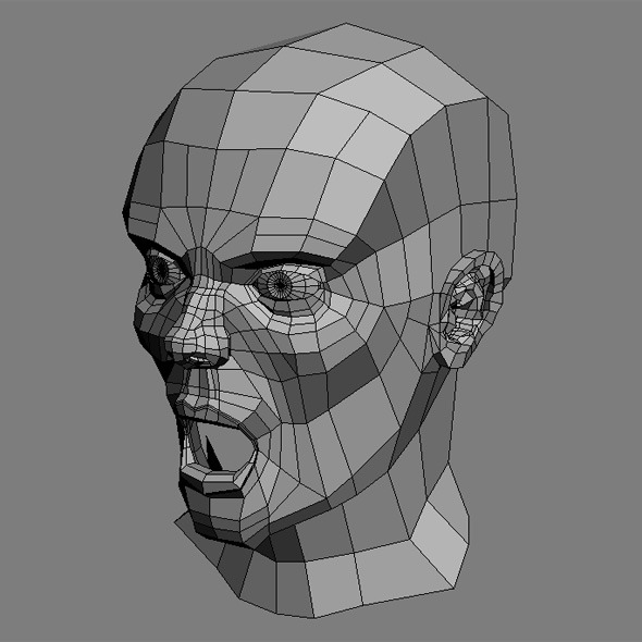 3DOcean Male Head Base Mesh 504448