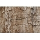 Wooden grunge texture - GraphicRiver Item for Sale