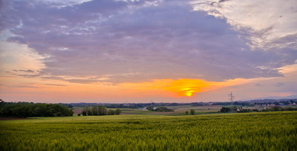 Summer Sunset Over Fields