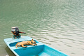 relaxing dog in vacation on the boat - PhotoDune Item for Sale