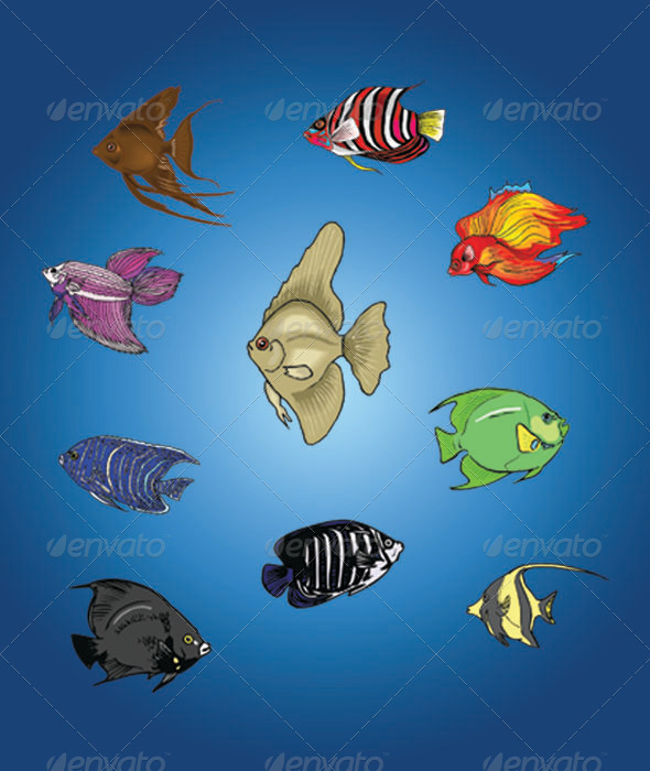 GraphicRiver Vector Fish Set 4896399