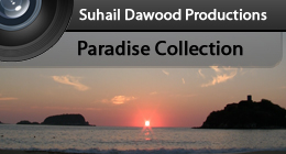 Paradise Collection - SD Productions