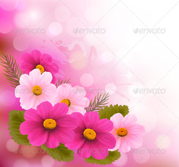 Holiday Background with Three Pink Flowers