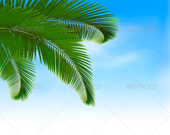 GraphicRiver Palm Leaves on Blue Background 4903886