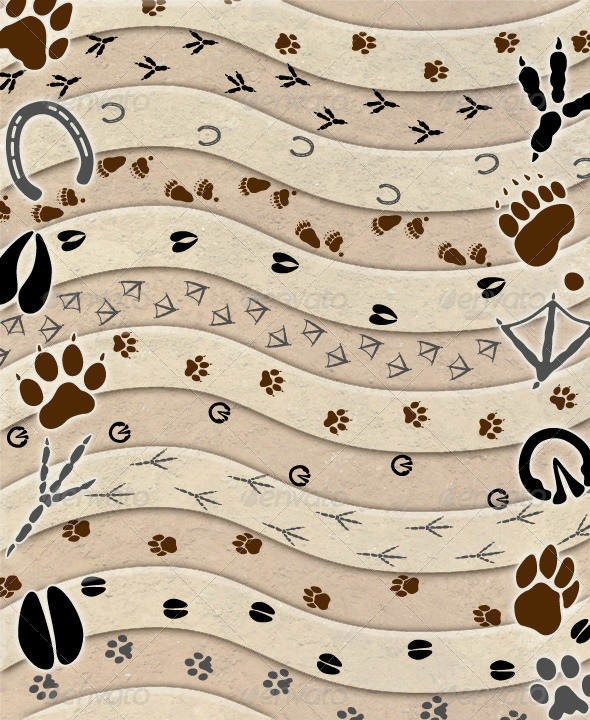 GraphicRiver Animal Tracks Brush Set 4904068