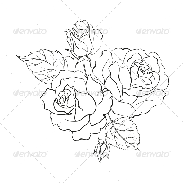 GraphicRiver Bouquet of Roses 4904205