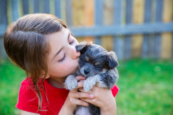 children girl kissing her puppy chihuahua doggy - Stock Photo - Images