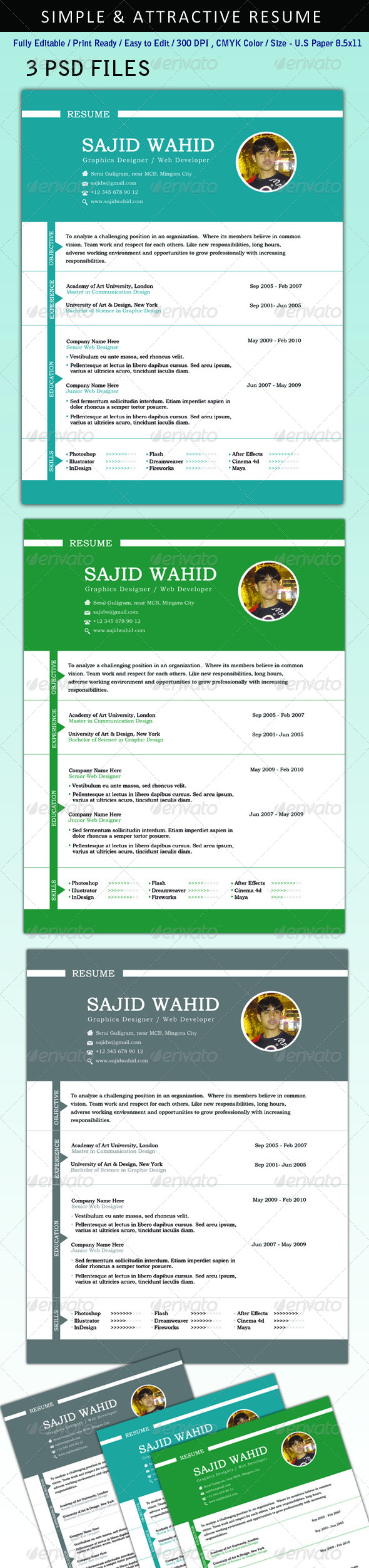 GraphicRiver Resume CV 4910874