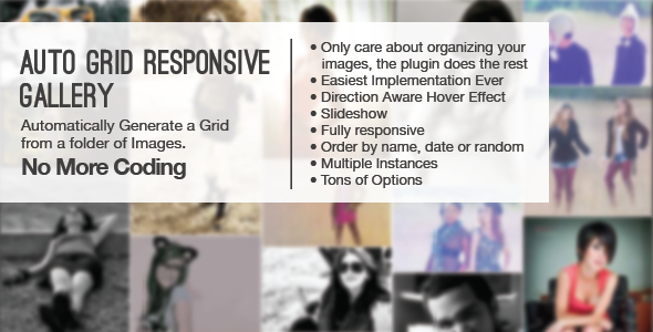 Auto Grid Responsive Gallery - CodeCanyon Item for Sale