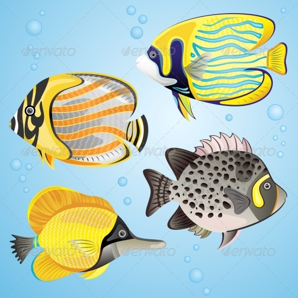 GraphicRiver Exotic Fish Set 4926512