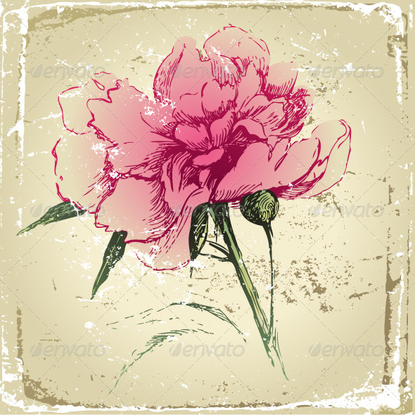 GraphicRiver Hand Drawn Peony Flower 4932061