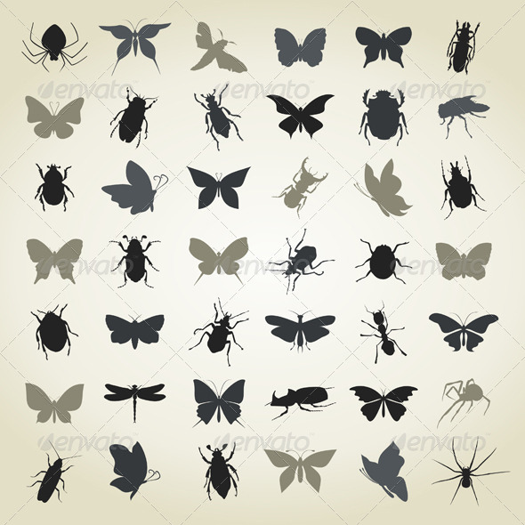 GraphicRiver Collection of Insects4 4932900
