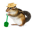 Funny chipmunk with straw hat and shovel - PhotoDune Item for Sale
