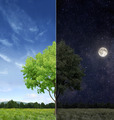 Day and night concept - PhotoDune Item for Sale