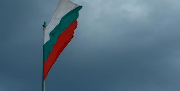 Bulgarian Flag 1