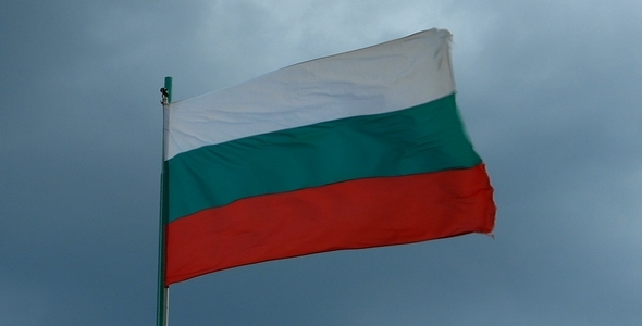 Bulgarian Flag 2