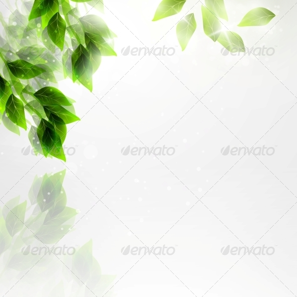 GraphicRiver Beautiful Green Leaves 4939793