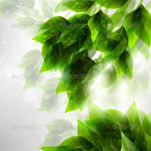 GraphicRiver Beautiful Green Leaves 4939794