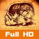 Anatomy Art 5 - VideoHive Item for Sale
