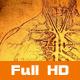 Anatomy Art 6 - VideoHive Item for Sale