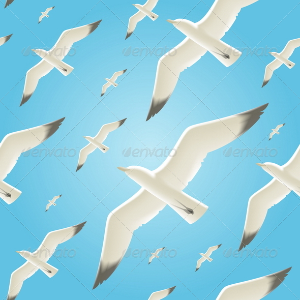 GraphicRiver Vector Seamless Background With Seagulls 4947943