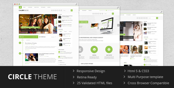 ThemeForest Circle theme Multi Purpose Template 4957057