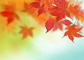 Beautiful Autumn Background - PhotoDune Item for Sale