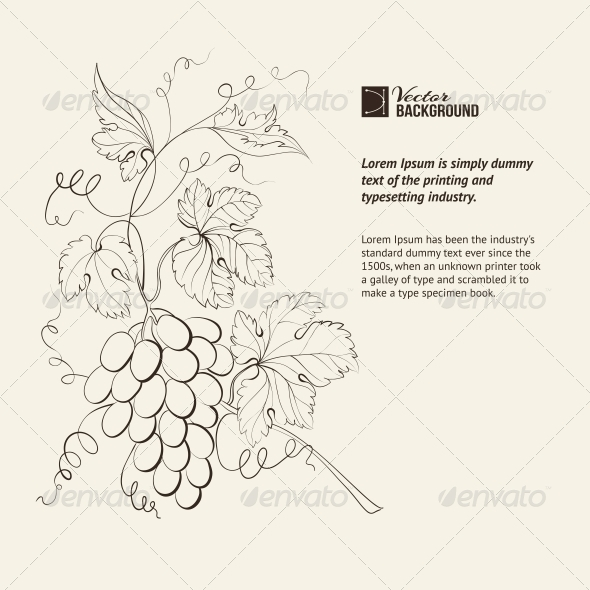 GraphicRiver Engraving of Grapes Branch 4960776