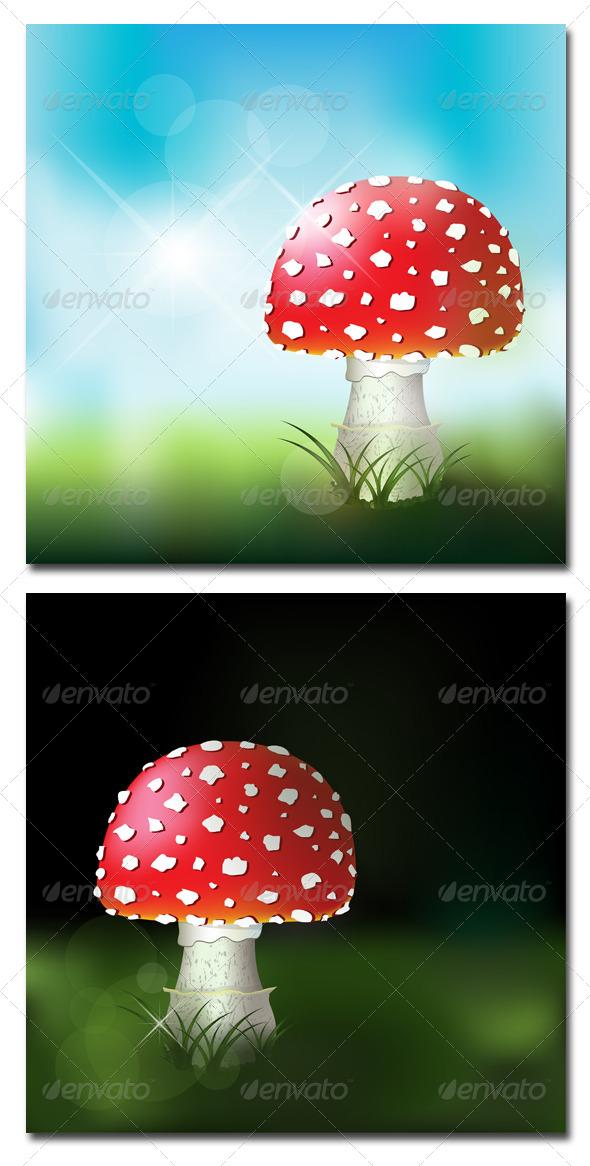 GraphicRiver Fly Amanita 4961626
