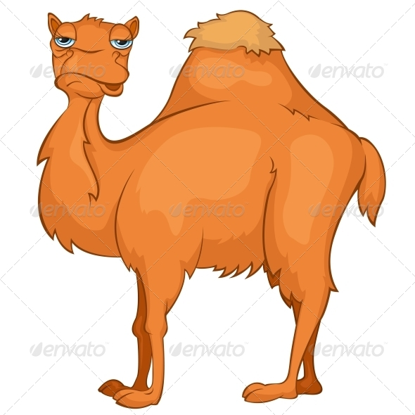 GraphicRiver Cartoon Character Camel 4963069